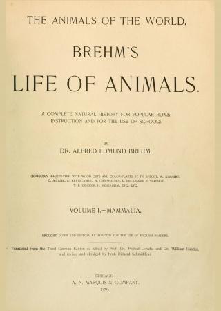 Brehm's Life of animals